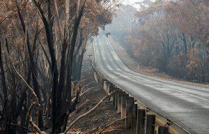 Bushfires and Coronavirus Cloud the Outlook for the Australian Economy